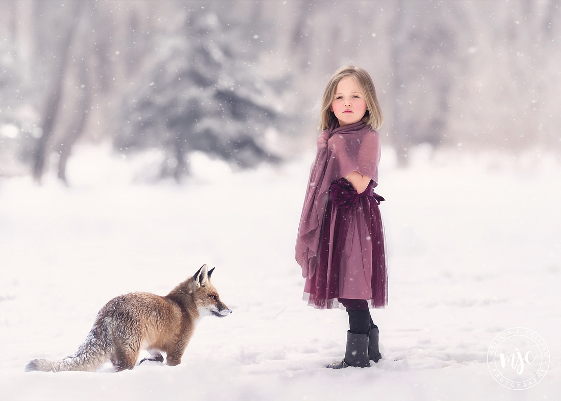 Adorable little girl outside in the winter in an artful composite with a fox in the snow